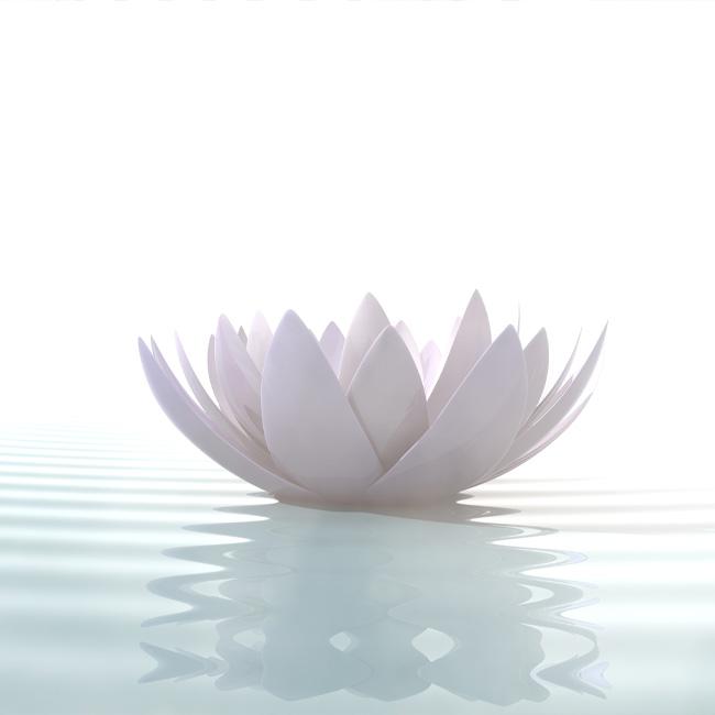 reinkarnationstherapie - reinkarnationstherapie_lbl-sitzung.jpg