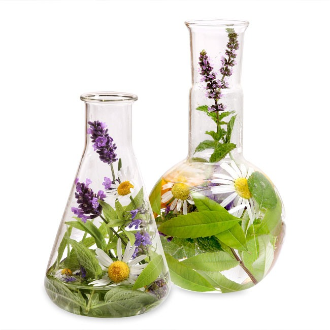 umweltmedizin - umweltmedizin-biologische-medizin.jpg